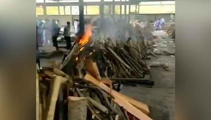 delhi-punjabi-bagh