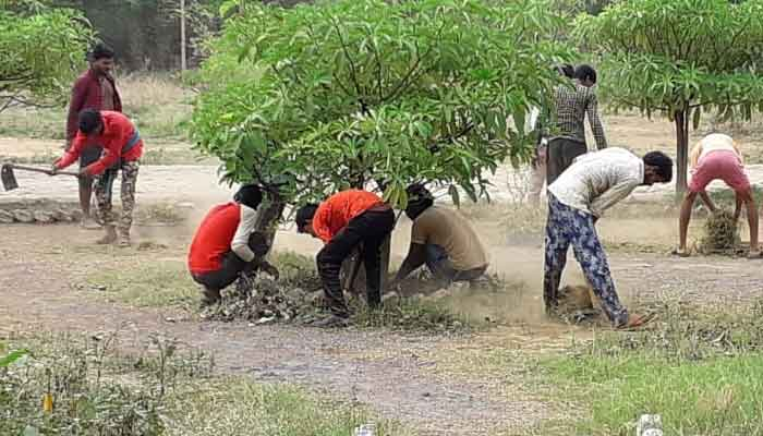 Photo of जांजगीर-चांपा क्वारंटाइन सेंटर में रह रहे श्रमिक उद्यान संवारने में लगे