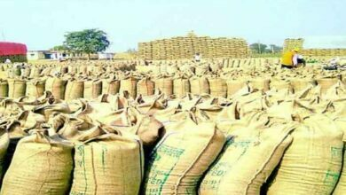 Photo of धान की कस्टम मिलिंग के लिए शासन ने जारी की नीतियां