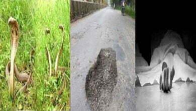 Photo of कांकेर: सर्प काटने एवं गड्ढा में गिरने से मृत्यु होने के प्रकरण में आर्थिक सहायता राशि स्वीकृत